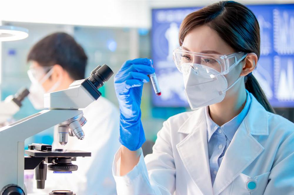 DNA種判別検査